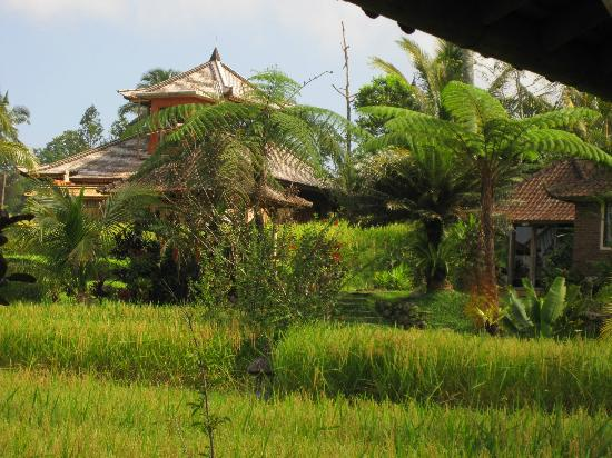 Prana Dewi Mountain Resort: one of the houses by the restaurant