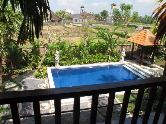 Bisma Sari Resort: View