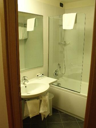 Anusca Palace Hotel Bologna: bagno