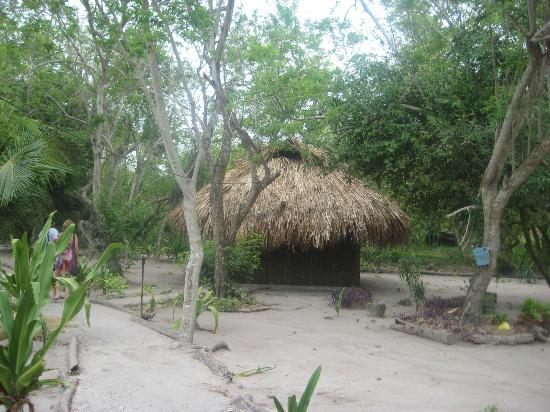 Las Palmeras Eco-Hotel: Thatched-roof cabana