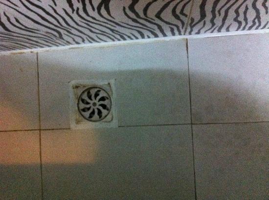 يانجشو تانجرينجي هوتل: muy sucio el baño 