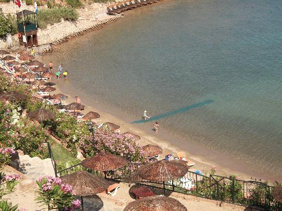 Didim Beach Resort & Spa : beach area