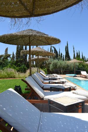 Villa President: piscine