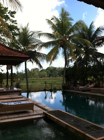 Green Field Hotel and Bungalows: pool view