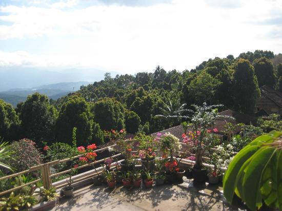 Karangsari Guest House: nice panoramic view from upper terrace