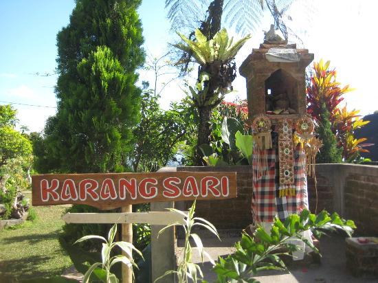 Karangsari Guest House: garden view