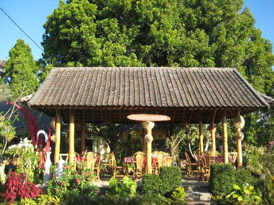 Karangsari Guest House: breakfast and dinner: at Warung Bambu under the clove tree