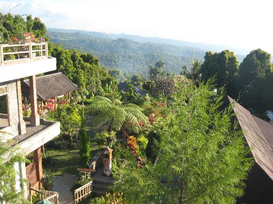 Karangsari Guest House: view from upper street (to the Karang Sari garden)