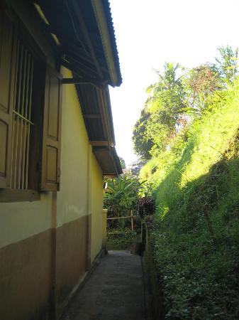 Karangsari Guest House : the path to our familyroom
