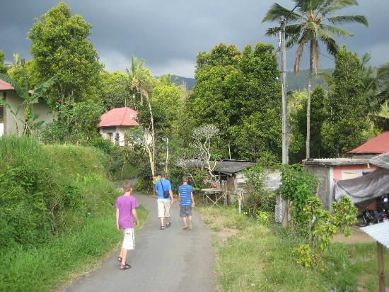 Karangsari Guest House : exploring Munduk by feet