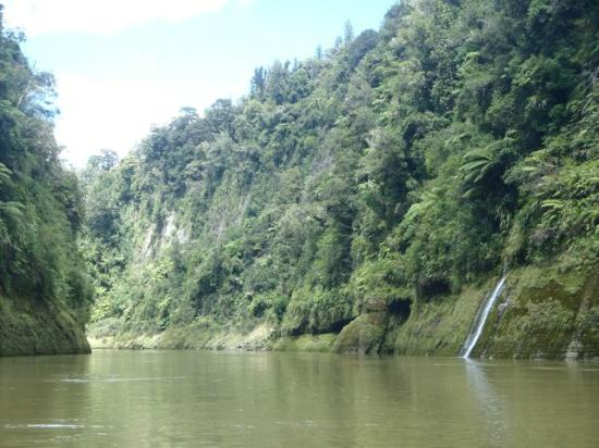 Whanganui River: Steep sides of the Wanganui river