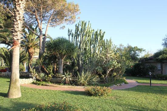Baia del Sole Resort: I giardini