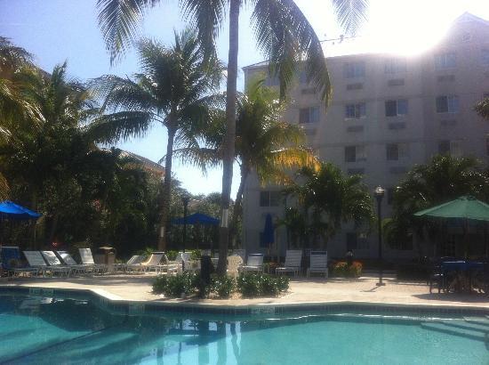 Stinger's : Poolside at Stingers, Seven Mile Beach
