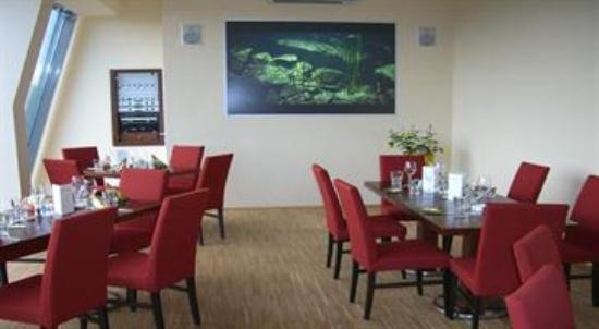 Venier's Elements Lounge Photo