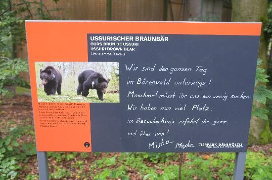 Tierpark Dählhölzli: Warnung: vielleicht verstecken sie sich ...