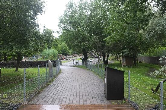 Tierpark Dählhölzli: Kinderzoo