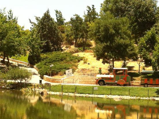 Mount Scopus National Botanical Garden: Uitzicht vanaf het terras van het restaurant