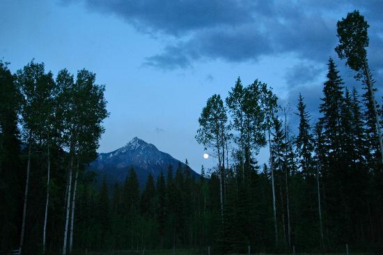 Kicking Horse Kabins: one of the views in the evening