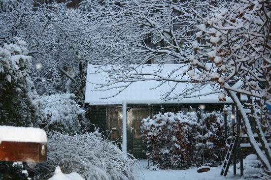 Flores & Puck: Cottage in the winter snow