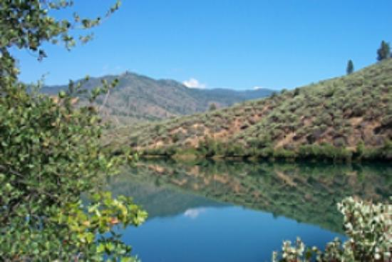 Sacramento River Bend Area