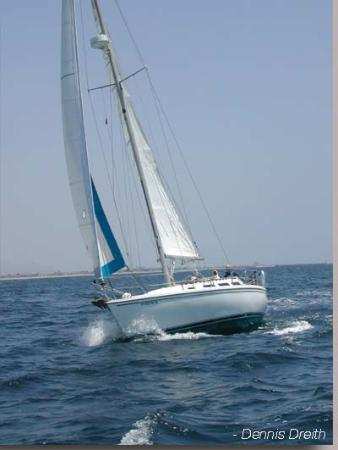 Blue Pacific Yachting Picture