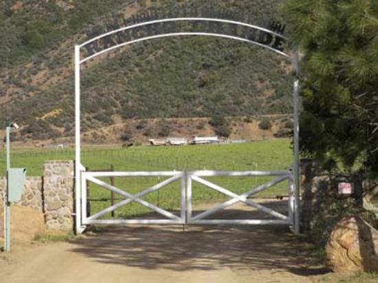 Bodee's Rancho Grande Photo