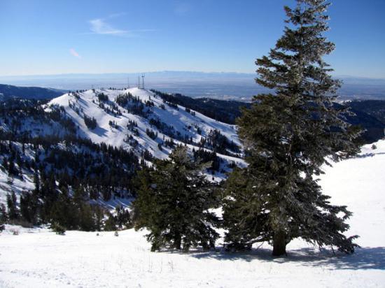 Pioneer Inn Condominiums: Ski area