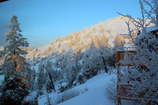 Pioneer Inn Condominiums: Winter on the mountain