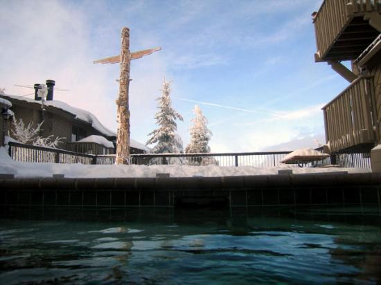 Pioneer Inn Condominiums: Totem pole near the hot tubs