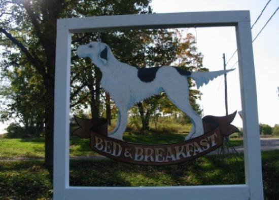 The Spotted Dog Bed and Breakfast-bild