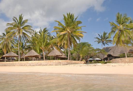 Photo of Driftwood Beach Club Malindi