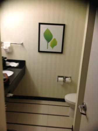 Fairfield Inn & Suites Charlotte Matthews: Bathroom
