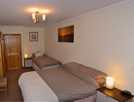 Tir Celyn B&B: Double Room
