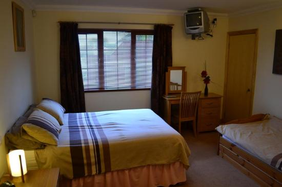 Tir Celyn B&B: Family Room