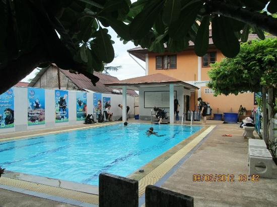 Buddha View Dive Resort: Swimming pool, perfect for your first dive!