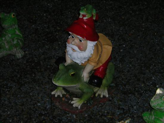 The Gnome Reserve & Wild Flower Garden: display 3