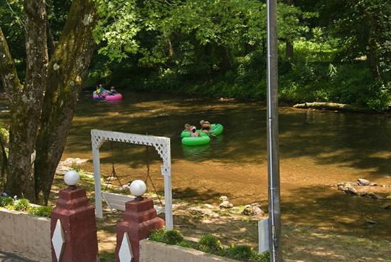 Riverbend Motel & Cabins : Swings on the Chattahoochee River
