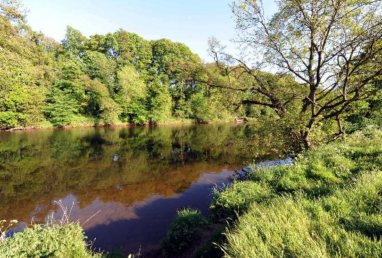 Drybeck Farm: The river over which the yurts and caravan look