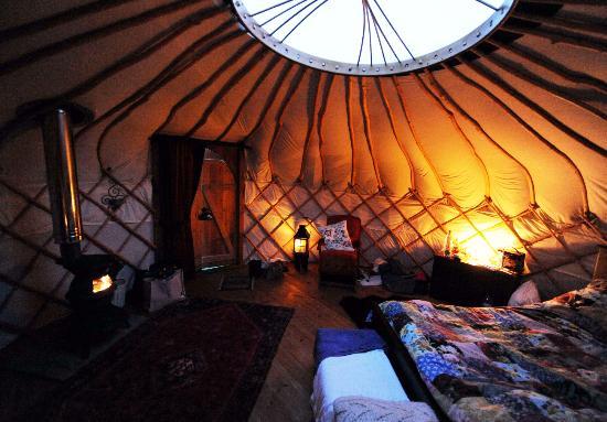 Drybeck Farm: The yurt by night