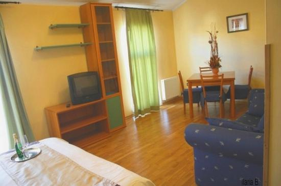 Central Hotel Tiepolo: Room and Living area