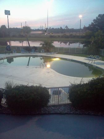 Clarion Inn: Algae in pool