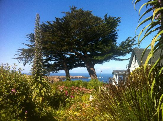 Agate Cove Inn Hotel: Garden View