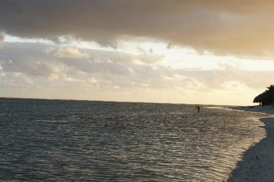 Namuka Bay Lagoon Resort: Line fishing