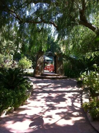 Emerald Iguana Inn: Path to the pool and office