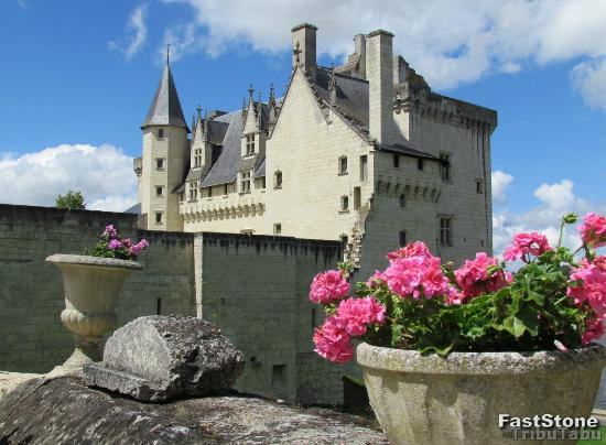 Château de Montsoreau : Le château
