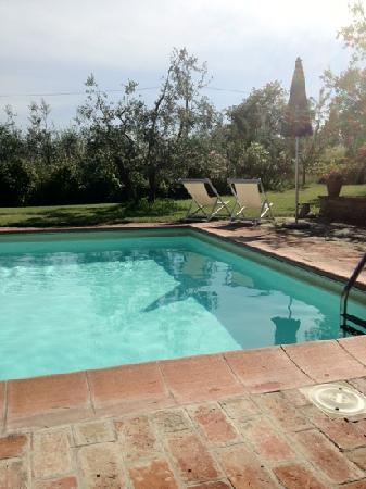Agriturismo La Loccaia: piscina e giardino