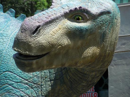 Aladar Picture Of Disney S Animal Kingdom Orlando
