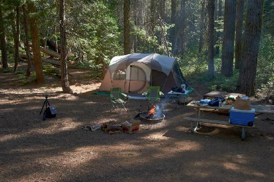 Crane Flat Campground: Crane Flat - #522