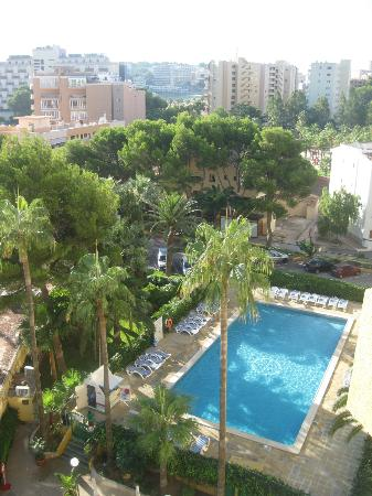 Las Palomas: View of the pool.