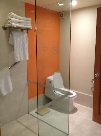 Sheraton Santa Fe, Mexico City: Shower